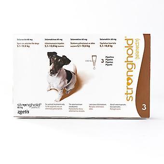 Hochburg für Hunde 5,1-10kg (11-22lbs) braun, 3er-Pack