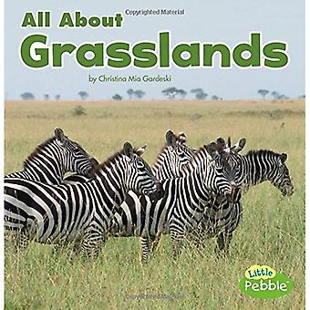 All about Grasslands (Habitats)