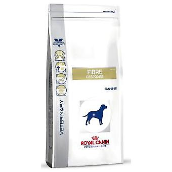Royal Canin Fibre Response Canine (Dogs , Dog Food , Dry Food)
