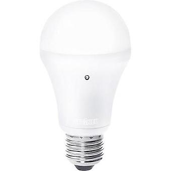 LED E27 Arbitrary 8.5 W = 54 W Warm white (Ø x L) 60 mm x 117 mm EEC: A Steinel incl. twilight switch 1 pc(s)