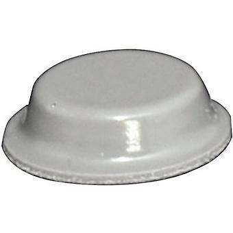 TOOLCRAFT PD2125G Foot self-adhesive, circular Grey (Ø x H) 12.7 mm x 3.5 mm 1 pc(s)