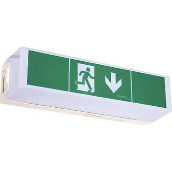 B-SAFETY BR 565 030 Escape route lighting Ceiling surface-mount, Wall surface-mount