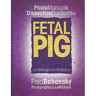 Fetal Pig: Photomanual and Dissection Guide