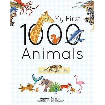 Mina första 1000 djur