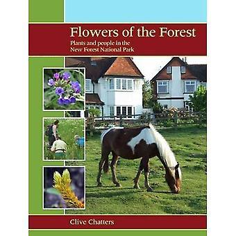 Flores da floresta: plantas e as pessoas no Parque Nacional de nova floresta