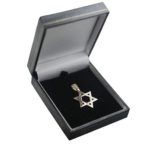 9ct Gold 27x27mm plain Star of David Pendant on a bail