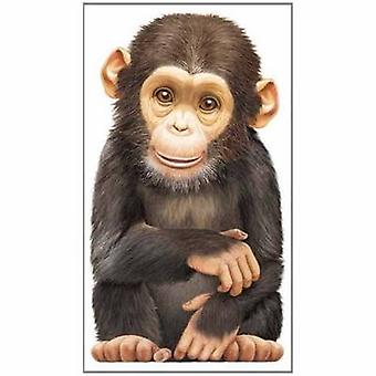 Little Monkey - Look at Me by L. Rigo - 9780764164286 Book