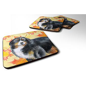 Set of 4 Bernese Mountain Dog Fall Foam Coasters Set of 4