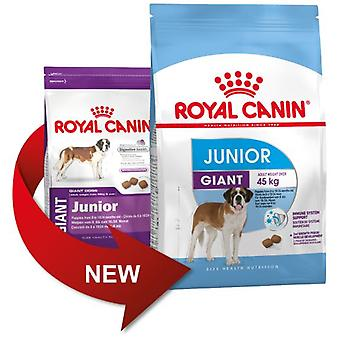 Royal Canin Giant Junior (Dogs , Dog Food , Dry Food)