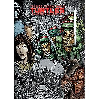 Teenage Mutant Ninja Turtles: Ultimate Collection volym 1