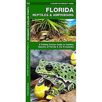 Florida Reptielen & Amfibieën: Een opvouwbare Pocket Guide to bekende soorten van Florida & de Everglades (een Pocket natuurgids)