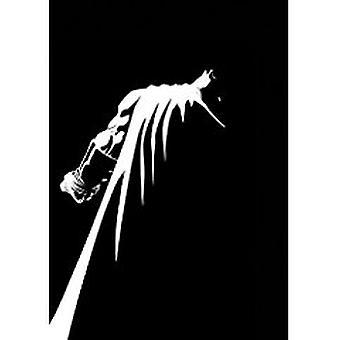 Batman The Dark Knight Master Race by Frank Miller - 9781401265137 Bo