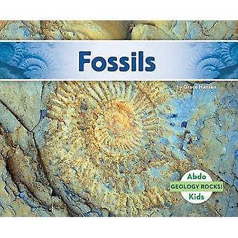 Fossils by Grace Hansen - 9781629709055 Book