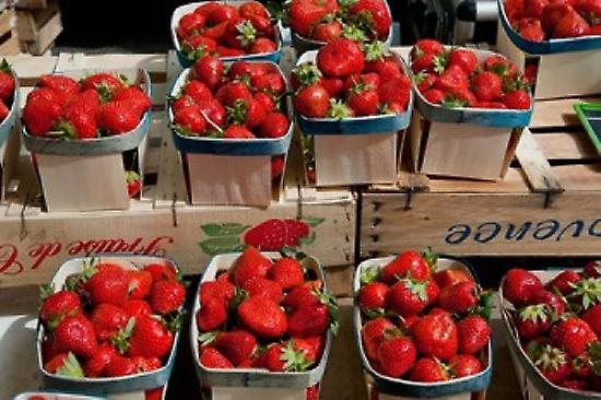 pailleberries for sale at weekly market Arles Bouches-Du-Rhone Provence-Alpes-Cote dAzur France Poster Print by Panoramic Images (36 x 24)