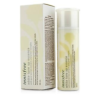 Innisfree White Tone Up Essence 50ml/1.69 oz