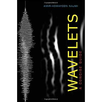Wavelets - A Concise Guide by Amir-Homayoon Najmi - 9781421404967 Book