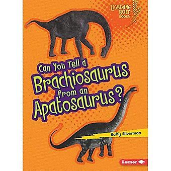 Voitko kertoa Brachiosaurus Apatosaurus?