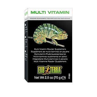Exo Terra Multi Vitamin Supplement 70g