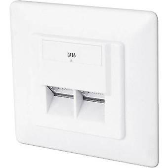 Network outletFlush mountInsert with main panel and frameCAT 62 portsDigitusPure white(5 Pack)
