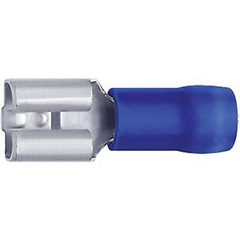 Klauke 7308 Blade receptacle Connector width: 7.7 mm Connector thickness: 0.8 mm 180 ° Partially insulated Blue 1 pc(s)