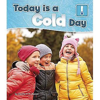 Heute ist ein kalter Tag - Pebble Bücher: Was ist das Wetter heute?