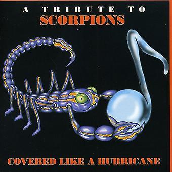 Dækket som en orkan-en hyldest til - dækket som en orkan-en hyldest til [CD] USA import