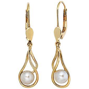 Orecchini pendenti perle boutons 585 oro giallo Gold 2 perla orecchini