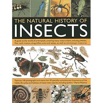 De natuurlijke geschiedenis van insecten - een gids in de wereld van geleedpotigen-