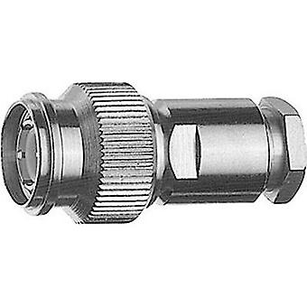 TNC connector Plug, straight 75 Ω Telegärtner J01012A2215