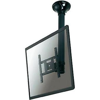 TV ceiling mount 25,4 cm (10) - 101,6 cm (40) Swivelling/tiltable, Swivelling NewStar Products