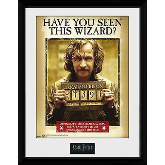 Harry Potter Sirius Azkaban Sammler Print