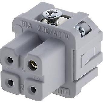 Amphenol C146 10B003 002 4 Socket Insert Amphenol C146 10B003 002 4 C146 10B003 002 4 Heavy-duty connectorsIndustrial connectorsRectangle plugs Load