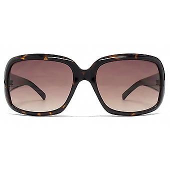 French Connection FC Logo Temple Sunglasses In Tortoiseshell