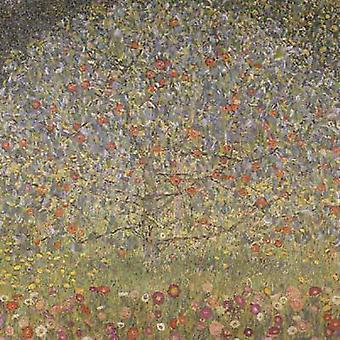 りんごの木では、グスタフ ・ クリムト、50x50cm