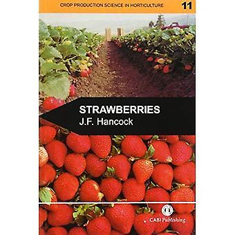 Fraises (productions végétales en Horticulture)
