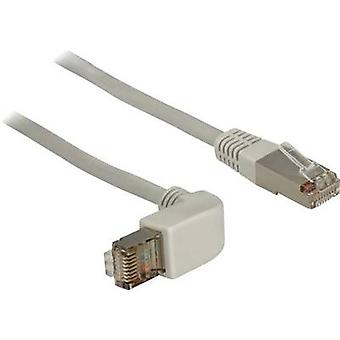RJ45 Redes Cable CAT 5e FTP/S m 1 gris Delock