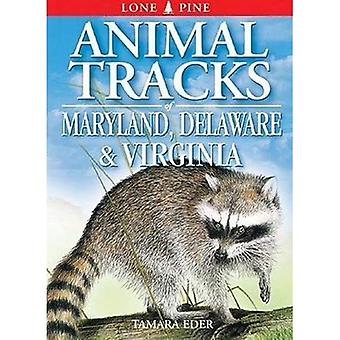 Animal Tracks of Maryland, Delaware and Virginia