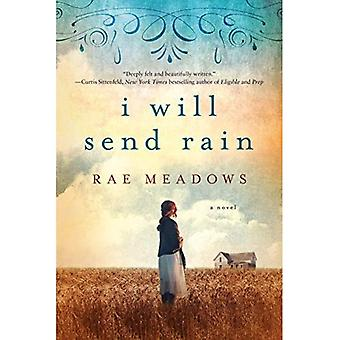 I Will Send Rain: A Novel
