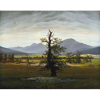 The Solitary Tree,Caspar David Friedrich,50x40cm