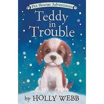 Teddy in Trouble by Holly Webb - 9781680104110 Book