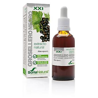 Soria Natural Blackcurrant Extract 21st Century (Herboristeria , Natural extracts)