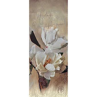 Magnolia-Plakat-Druck von Sarah Butcher