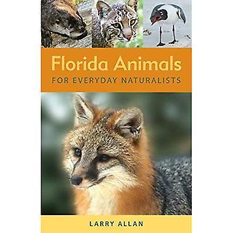 Florida djur för vardagliga naturforskare