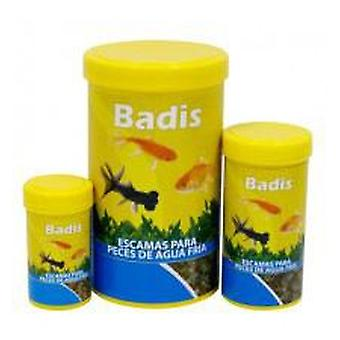 Badis Badis Cold Water Scale (Fish , Ponds , Food , Cold Water , Food for Pond Fish)