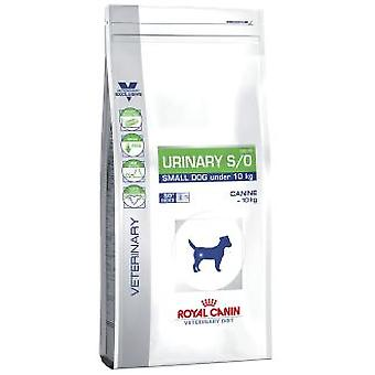 Royal Canin Urinary S/O Small Dog (Hunde , Hundefutter , Tiernahrung , Trockenfutter)