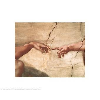 The Creation of Adam (Detail) Poster Print by Michelangelo Buonarroti (20 x 16)