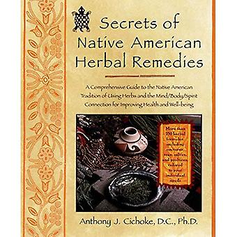 Secrets of Native American Herbal Remedies: A Comprehensive Guide to the Native American Tradition of Using Herbs and the Mind/body/spirit Connection (Healing Arts)