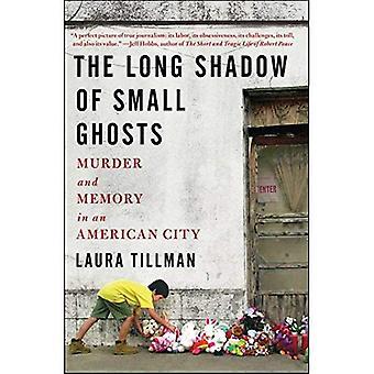 De lange schaduw van kleine geesten: moord en geheugen in een Amerikaanse stad