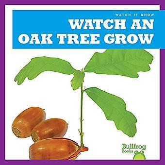 Watch an Oak Tree Grow (Watch It Grow)