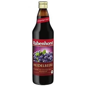 Rabenhorst Wild Blue Blueberry Juice 330ml Eco. (Dietetics and nutrition , For drinking)